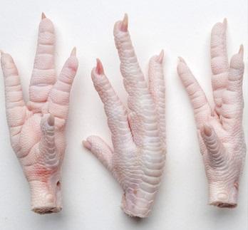 Halal Frozen Chicken Paws