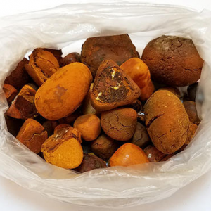Buy Ox Cow Gallstones